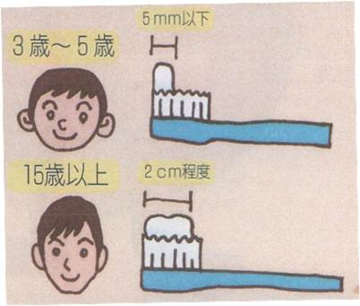年齢に応じた量の歯磨剤をつけます